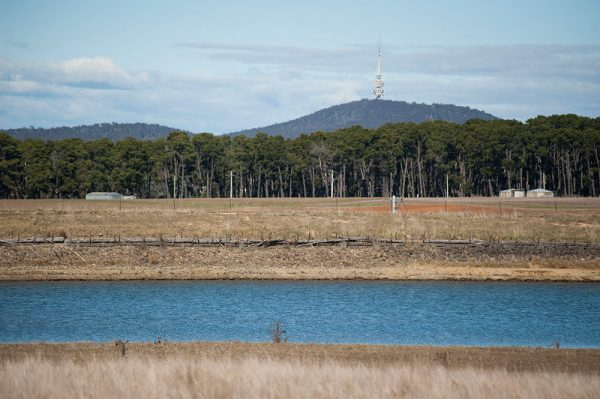 View of Black Mountain at the southern end of the Ginninderra site.