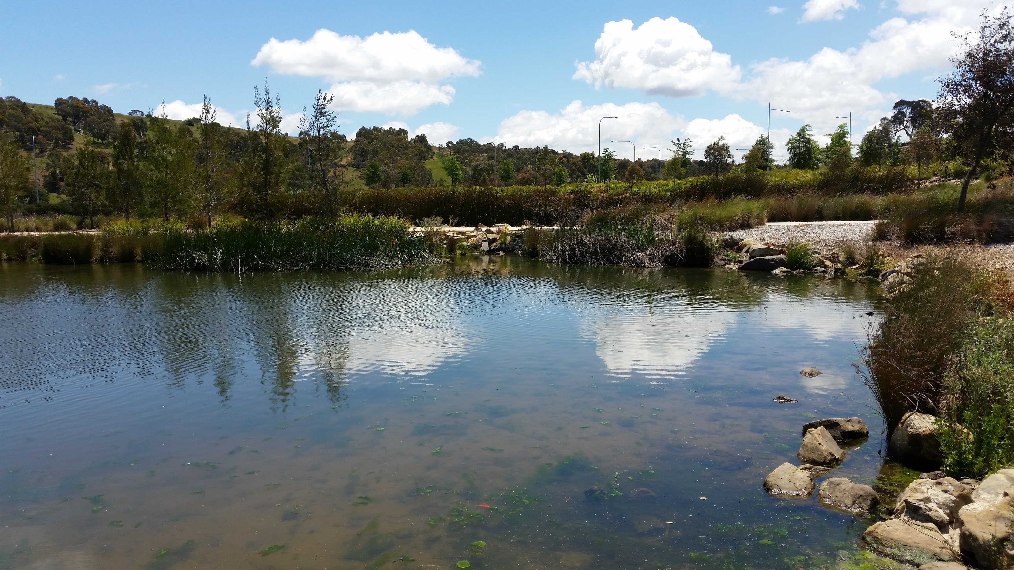 Water management is a key facet of the Ginninderra Project
